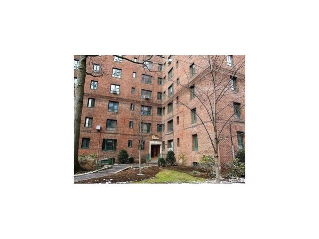 1946 E Tremont Avenue 5B, Bronx, NY 10462 (MLS #4802773) :: Mark Boyland Real Estate Team