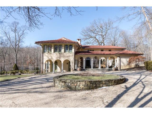 22 Bramblebush Road, Croton-On-Hudson, NY 10520 (MLS #4802804) :: William Raveis Legends Realty Group