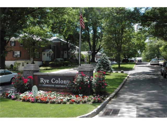 57B Peck Avenue 57B, Rye, NY 10580 (MLS #4802887) :: Mark Boyland Real Estate Team