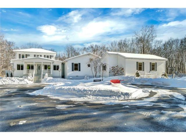 532 Springtown Road, New Paltz, NY 12561 (MLS #4802907) :: Michael Edmond Team at Keller Williams NY Realty
