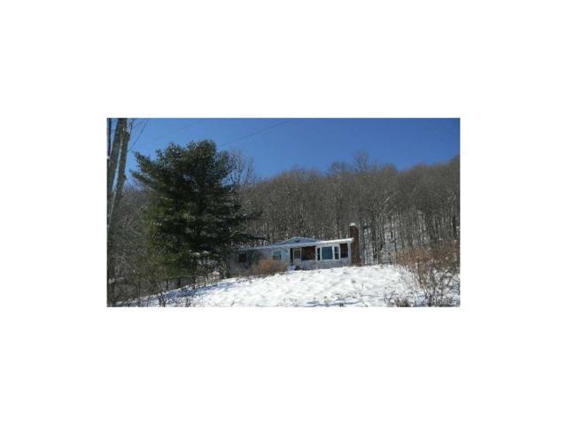 172 Dyker Road, North Branch, NY 12766 (MLS #4802964) :: Mark Boyland Real Estate Team