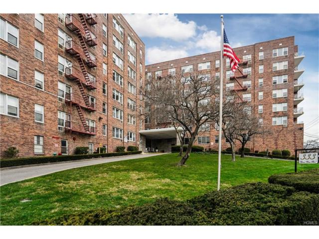 333 Bronx River Road #403, Yonkers, NY 10704 (MLS #4802965) :: Mark Boyland Real Estate Team