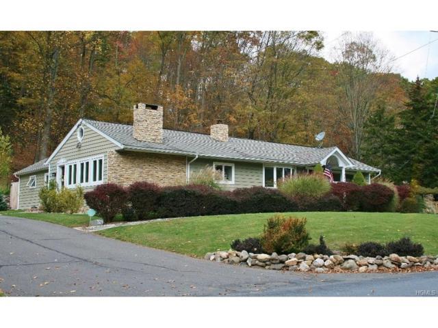 209 Bull Mill Road, Chester, NY 10918 (MLS #4802970) :: Mark Boyland Real Estate Team