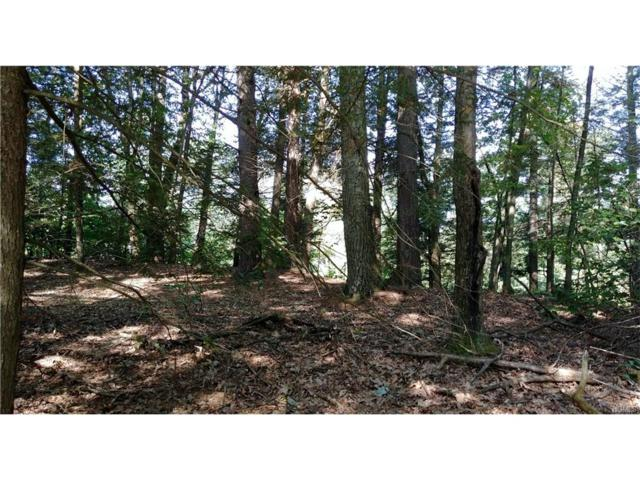 Lot 3 Grist Mill Road, Rosendale, NY 12472 (MLS #4802974) :: Michael Edmond Team at Keller Williams NY Realty