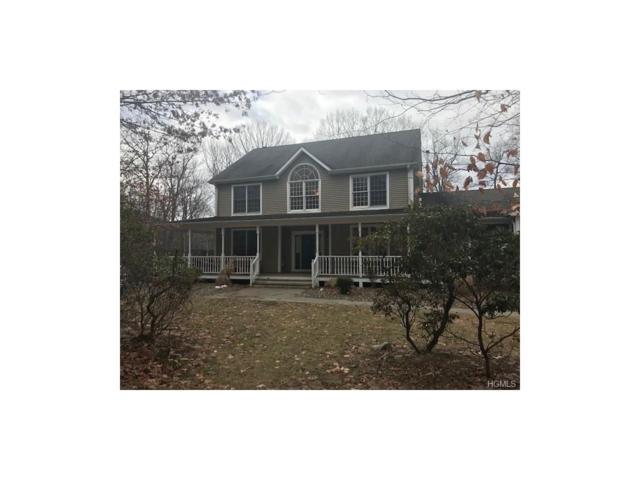 499 Depot Hill Road, Poughquag, NY 12570 (MLS #4802982) :: Michael Edmond Team at Keller Williams NY Realty