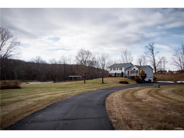 25 Meadow Ridge, Lagrangeville, NY 12540 (MLS #4803118) :: Mark Boyland Real Estate Team