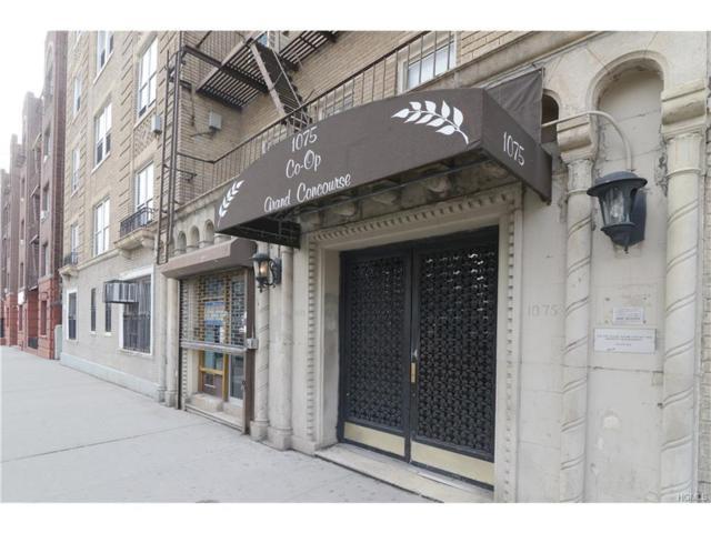 1075 Grand Concourse 2E, Bronx, NY 10452 (MLS #4803242) :: Mark Boyland Real Estate Team