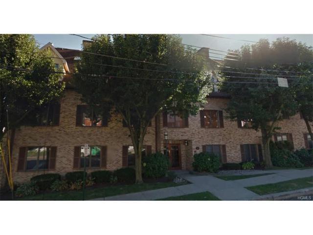 109 High Avenue #304, Nyack, NY 10960 (MLS #4803335) :: Mark Boyland Real Estate Team