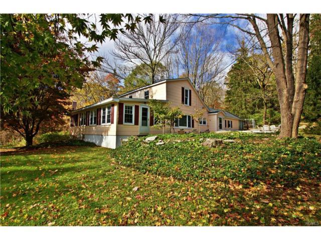 53 S White Rock Road, Holmes, NY 12531 (MLS #4803417) :: Mark Boyland Real Estate Team