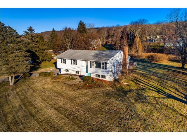 28 Stephen Drive, Dover Plains, NY 12522 (MLS #4803452) :: Mark Boyland Real Estate Team