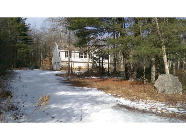 8 Mount Laurel Road, Greenfield Park, NY 12435 (MLS #4803488) :: Mark Boyland Real Estate Team