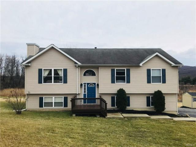806 Pulaski Highway, Goshen, NY 10924 (MLS #4803590) :: Mark Boyland Real Estate Team
