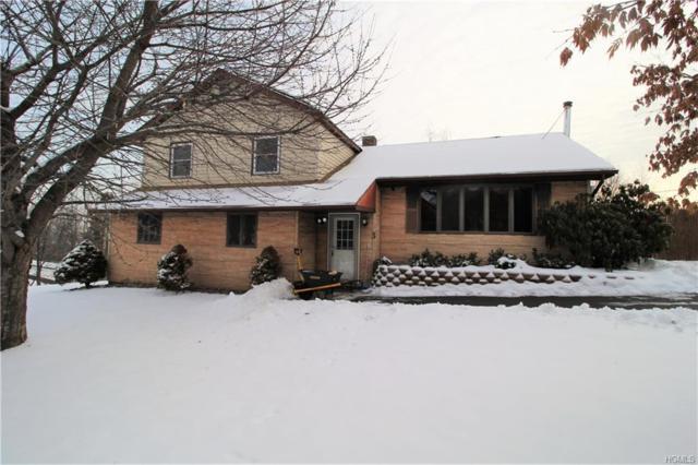 3 Mountain Road, Marlboro, NY 12542 (MLS #4803715) :: Mark Boyland Real Estate Team