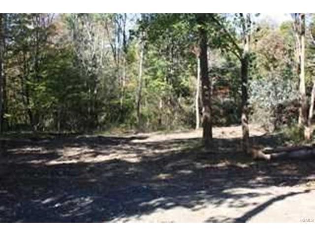 Chestnut Ridge Road, Millbrook, NY 12545 (MLS #4803882) :: Mark Boyland Real Estate Team