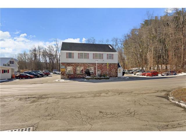 63 Fairfield Drive, Brewster, NY 12563 (MLS #4803925) :: Michael Edmond Team at Keller Williams NY Realty