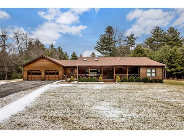 317 S Maplewood Road, Monticello, NY 12701 (MLS #4804161) :: Michael Edmond Team at Keller Williams NY Realty