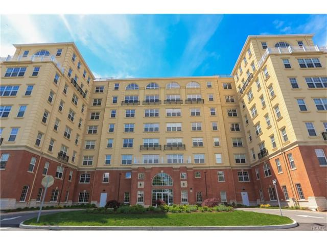 10 Byron Place #302, Larchmont, NY 10538 (MLS #4804254) :: Mark Boyland Real Estate Team