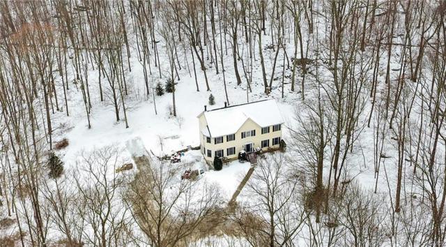 122 N White Rock Road, Holmes, NY 12531 (MLS #4804255) :: Mark Boyland Real Estate Team