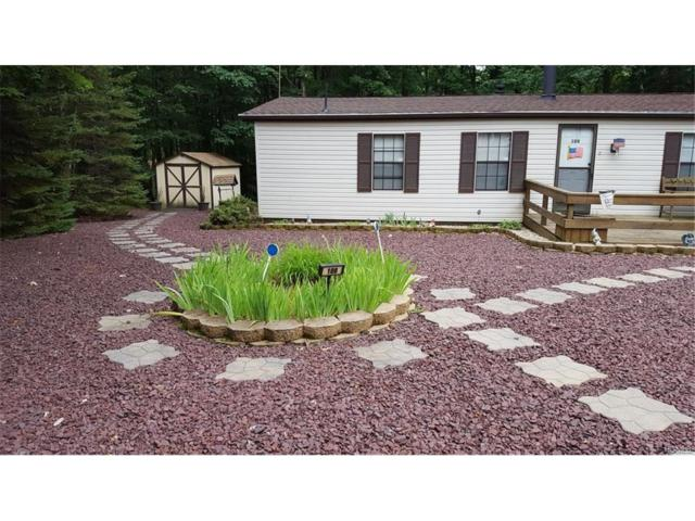 108 Fawn Terrace, Call Listing Agent, NY 18661 (MLS #4804291) :: Mark Boyland Real Estate Team
