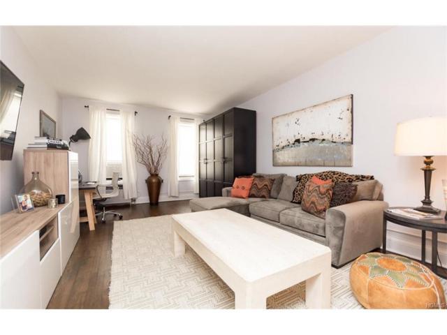 3875 Waldo Avenue 10L, Bronx, NY 10463 (MLS #4804363) :: Mark Boyland Real Estate Team