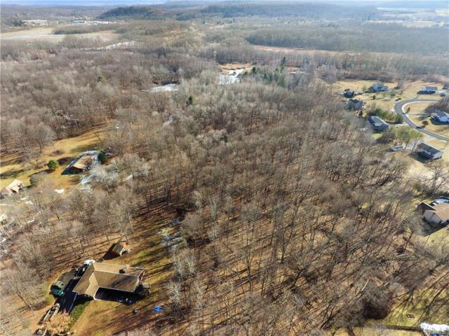 S Ohioville Road, New Paltz, NY 12561 (MLS #4804518) :: Mark Boyland Real Estate Team
