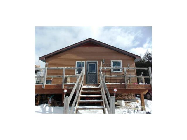 540 Breezy Hill Road, Livingston Manor, NY 12758 (MLS #4804650) :: Stevens Realty Group