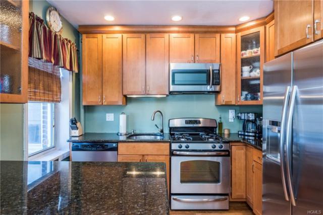 5414 Arlington Avenue J61, Bronx, NY 10471 (MLS #4804907) :: Mark Boyland Real Estate Team
