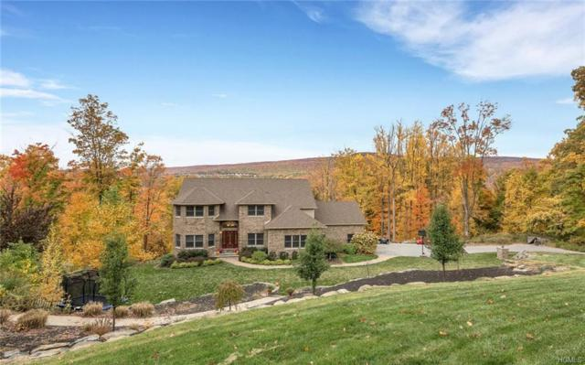 285 Skyline Drive, Highland Mills, NY 10930 (MLS #4804918) :: Mark Boyland Real Estate Team