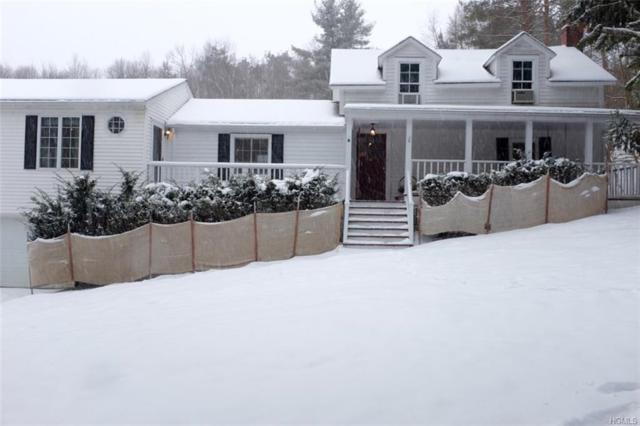 426 Tompkins Road, Copake, NY 12502 (MLS #4804942) :: Mark Boyland Real Estate Team