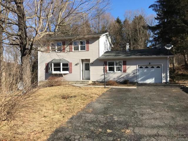 85 Washington Drive, Highland Mills, NY 10930 (MLS #4804980) :: William Raveis Baer & McIntosh