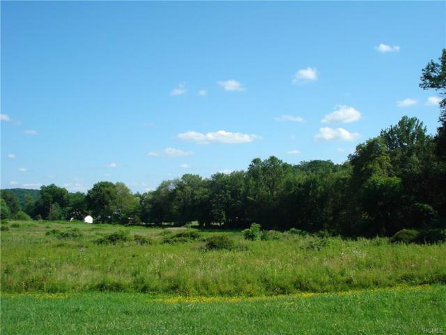 Wildrose, Lagrangeville, NY 12540 (MLS #4805058) :: Mark Boyland Real Estate Team