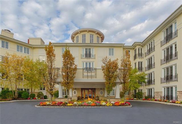 203-B Trump Park #203, Shrub Oak, NY 10588 (MLS #4805118) :: Mark Boyland Real Estate Team