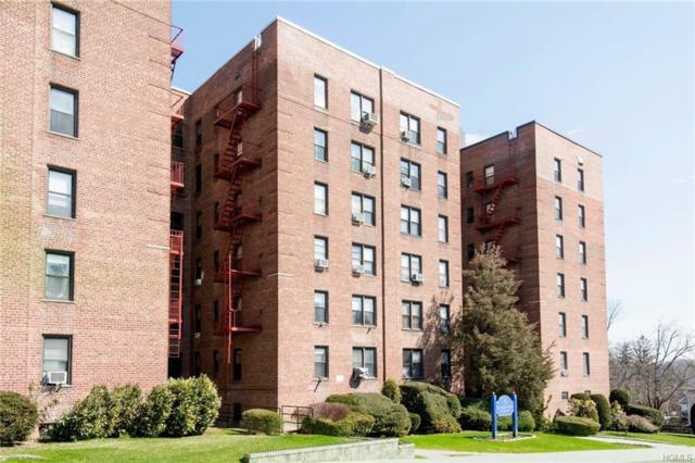 164 Church Street 5J, New Rochelle, NY 10805 (MLS #4805276) :: Mark Boyland Real Estate Team