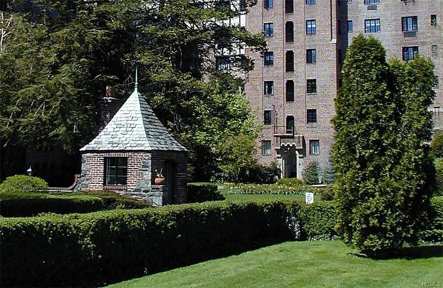 66 Milton Road E 21, Rye, NY 10580 (MLS #4805313) :: Mark Boyland Real Estate Team