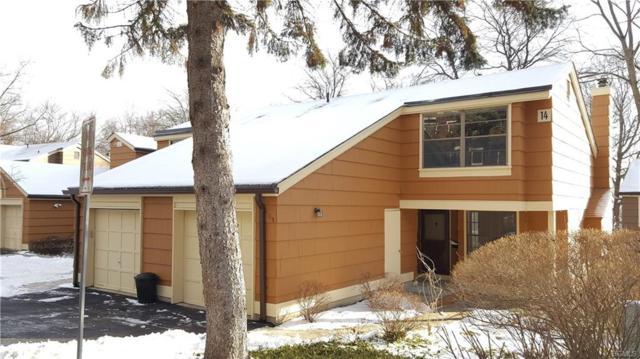 115 Treetop Circle, Nanuet, NY 10954 (MLS #4805329) :: Mark Boyland Real Estate Team