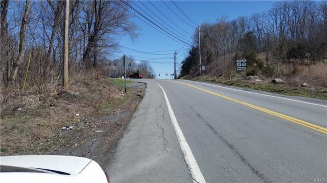 0 Nys Rte 17M, Chester, NY 10918 (MLS #4805387) :: Mark Boyland Real Estate Team