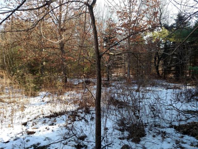 Pinegrove Drive, Wurtsboro, NY 12790 (MLS #4805427) :: Mark Boyland Real Estate Team