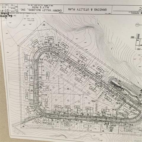 Allys Path, Rock Hill, NY 12775 (MLS #4805450) :: Mark Seiden Real Estate Team