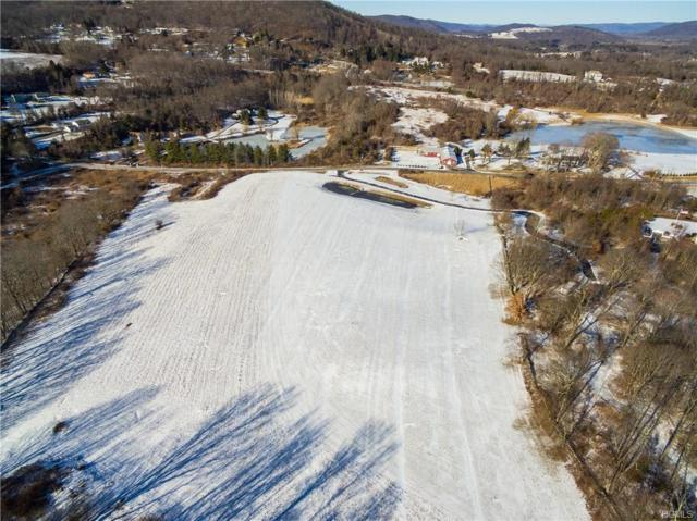 00 Harmony Road, Pawling, NY 12564 (MLS #4805484) :: Mark Boyland Real Estate Team