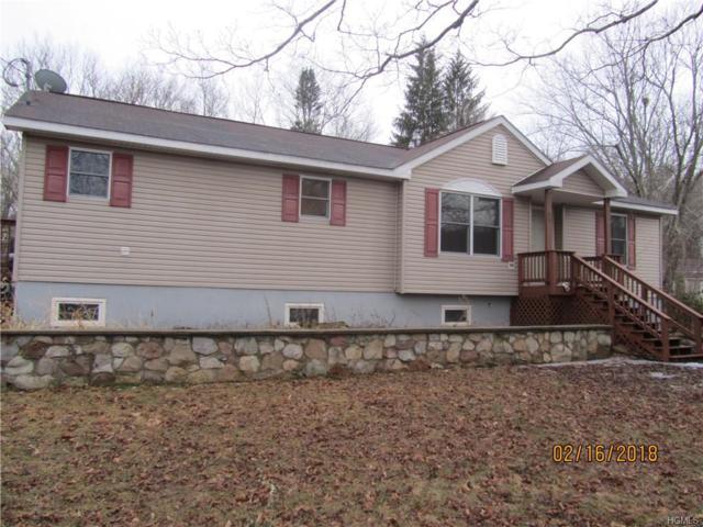 19 Pine Kill Road, Westbrookville, NY 12790 (MLS #4805501) :: Mark Boyland Real Estate Team