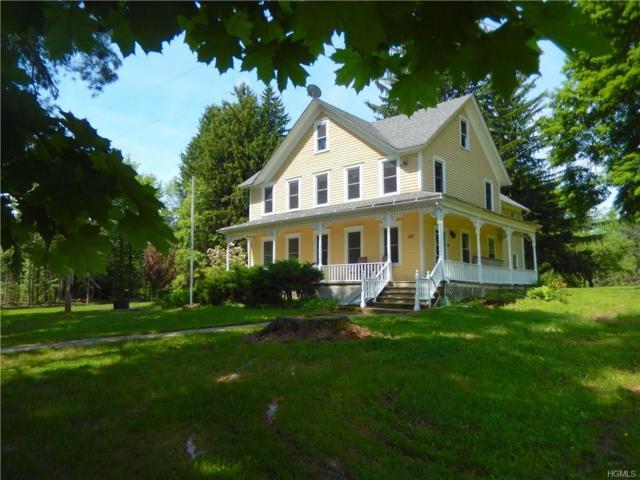 133 Schwartz Road, Callicoon, NY 12723 (MLS #4805527) :: Mark Boyland Real Estate Team