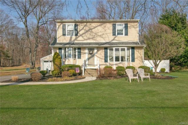 38 Swannekin Road, Blauvelt, NY 10913 (MLS #4805786) :: Mark Boyland Real Estate Team