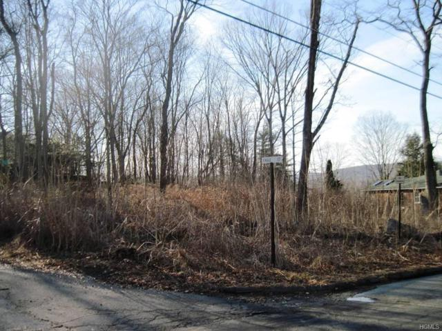 3 Morris Road, Garrison, NY 10524 (MLS #4805986) :: Mark Boyland Real Estate Team