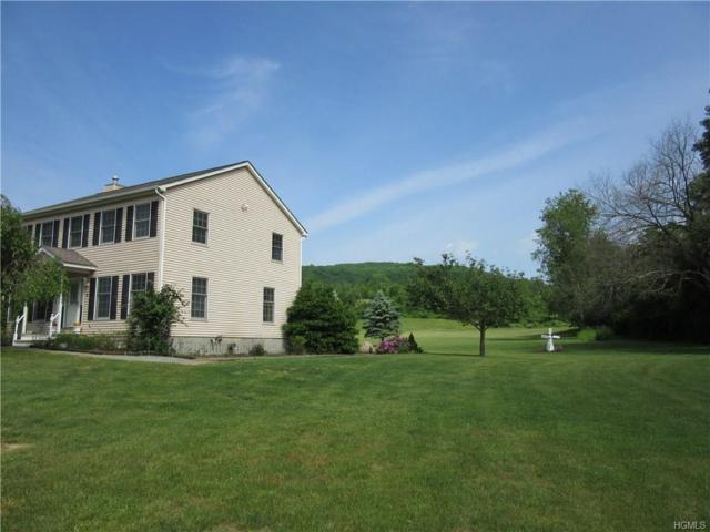 9 Folan Road, Amenia, NY 12501 (MLS #4806015) :: Mark Boyland Real Estate Team
