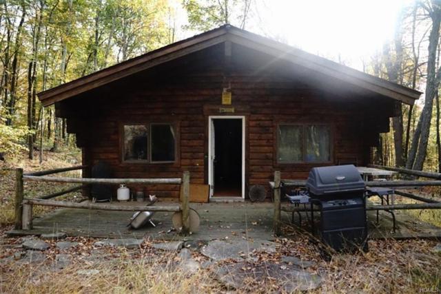76 South Street, Highland, NY 12528 (MLS #4806021) :: Mark Boyland Real Estate Team