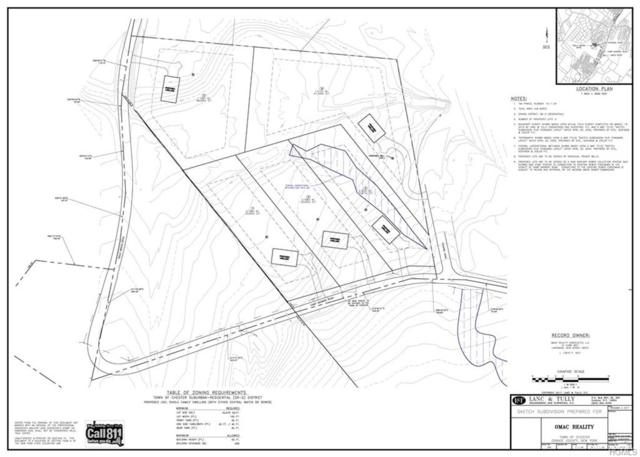 Trout Brook Road, Monroe, NY 10950 (MLS #4806283) :: Mark Boyland Real Estate Team