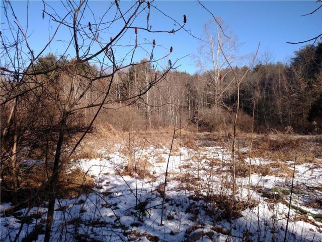 Woodland Drive, Wurtsboro, NY 12790 (MLS #4806319) :: Mark Boyland Real Estate Team
