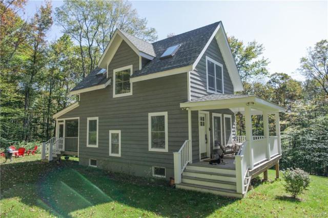 330 Amber Lake Road, Livingston Manor, NY 12758 (MLS #4806346) :: Stevens Realty Group