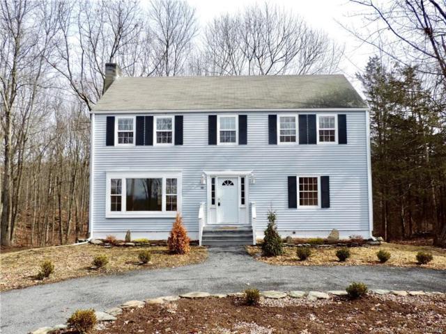 98 Battenfeld Road, Red Hook, NY 12571 (MLS #4806356) :: Mark Boyland Real Estate Team