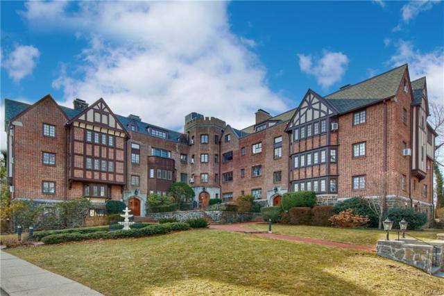 6 Davis B31, Rye, NY 10580 (MLS #4806396) :: Mark Boyland Real Estate Team